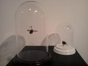 Beetle Rider by Tessa Farmer