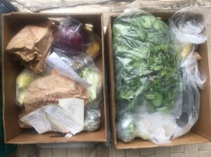 Boxes of fruit and vegetables